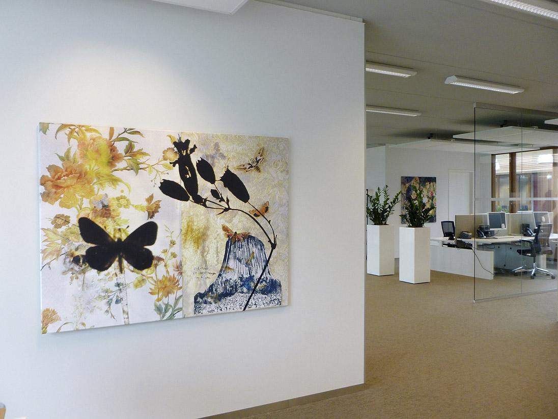 butterflies installation view Gemeentehuis Leiderdorp 2012 d