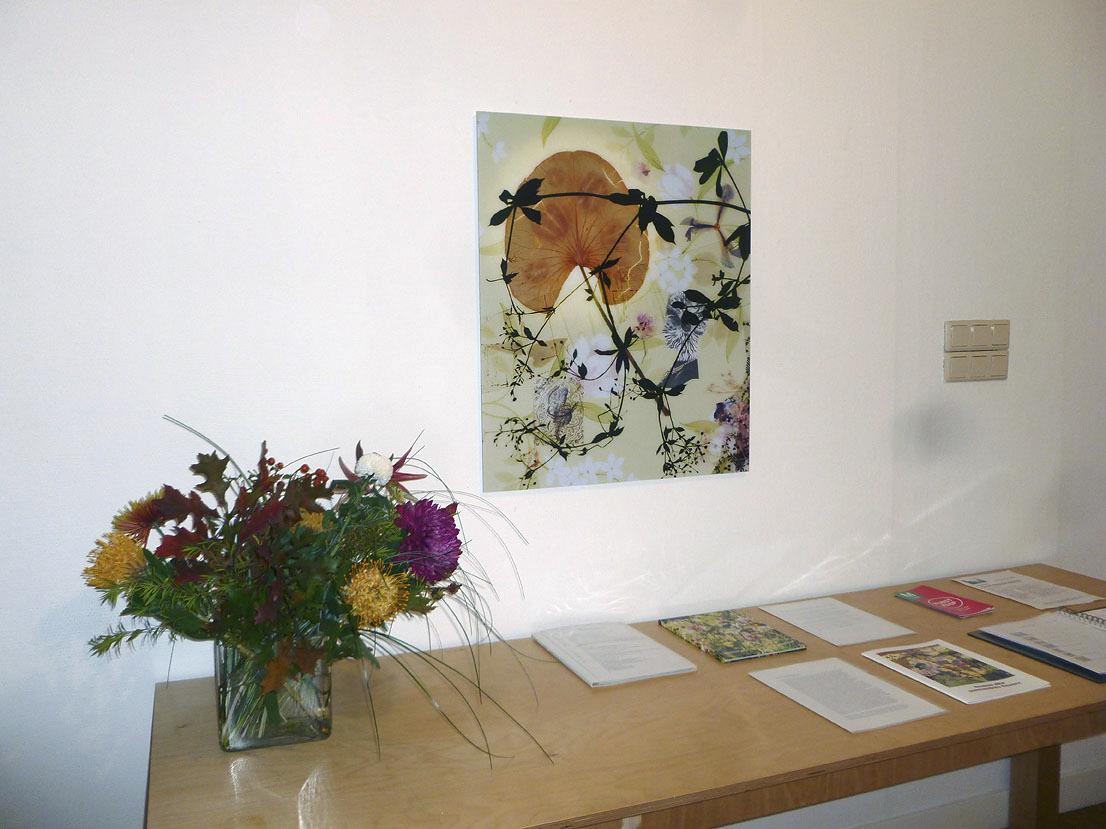 somnambule flowers installation view van Kranendonk Gallery 2015 d