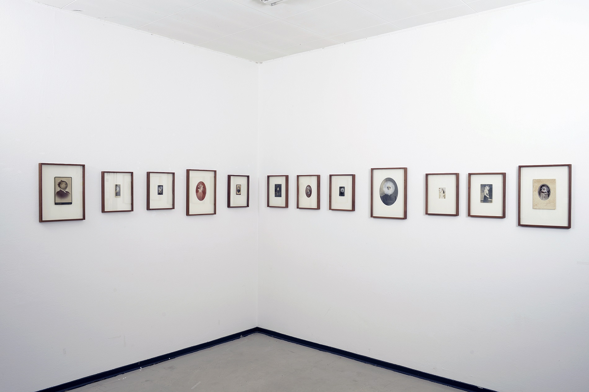 dramaqueens nikon installation atelier1forweb